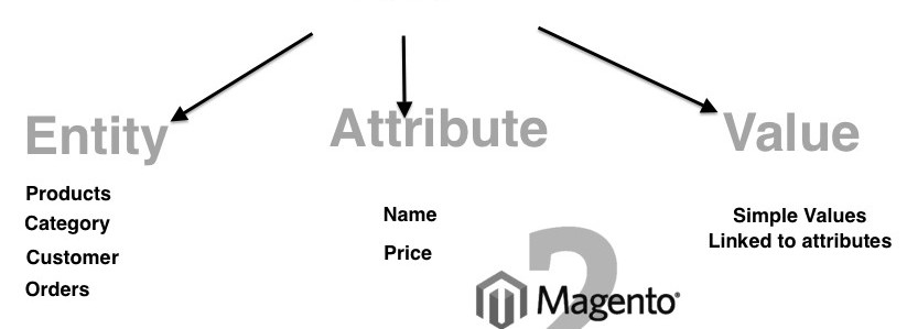 Magento 2 Add custom EAV attribute to category or customer (support